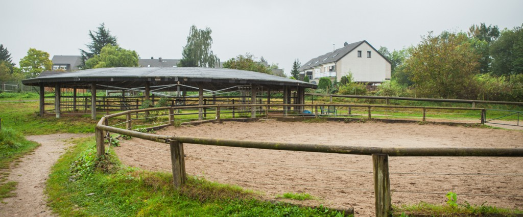 Reitanlage-Johanneshof-Paddock
